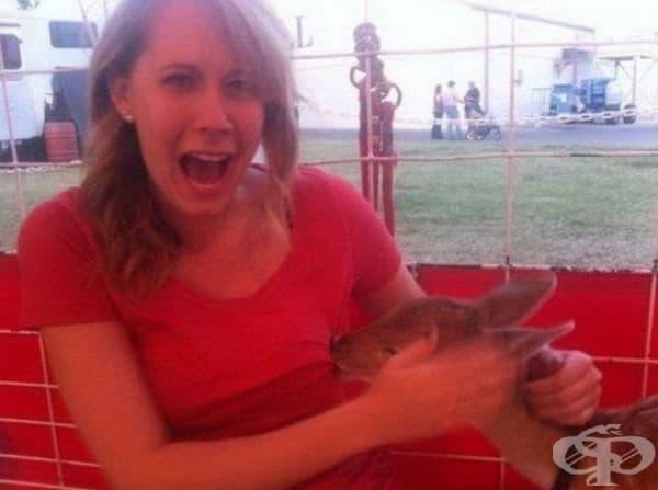 Никой не очакваше това от еленчето.
