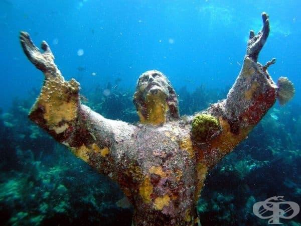 Докато се гмуркате с шнорхел из кораловите рифове на Кий Ларго, може да се натъкнете на тази 2,5-метрова статуя на Исус Христос, Флорида, САЩ.