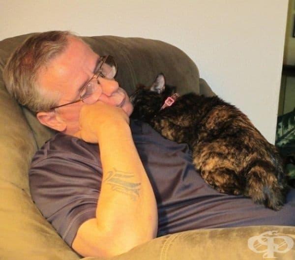 Ако трябва да сме честни, този човек въобще не обича котки, но пък те нямат проблем с това.