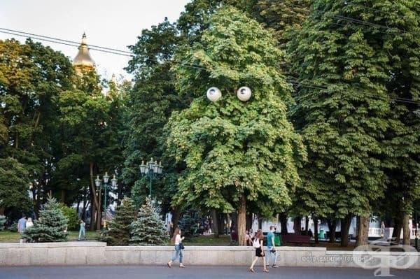 Тези улични лампи изглеждат като очи на дърво.