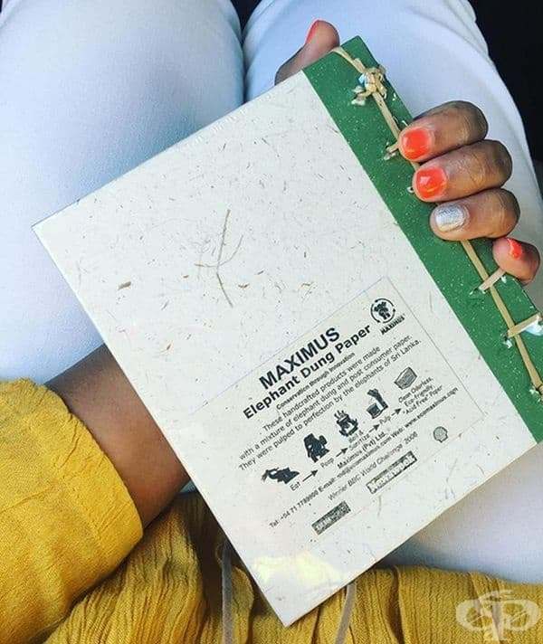 От слонови екскременти може да се направи хартия. Изработването на висококачествена хартия от изпражнения на слон е възможно, тъй като съдържа много растителни влакна и е полезно за околната среда.