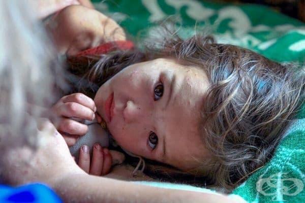 Спасение: Това малко момиче оцелява по чудо, след като се губи в сибирската гора за седмица.
