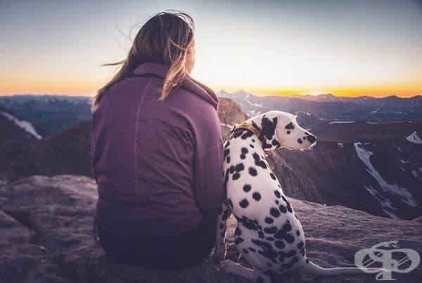Освен това обича и разходките: в парка, в планината, навсякъде, където може да се бяга.