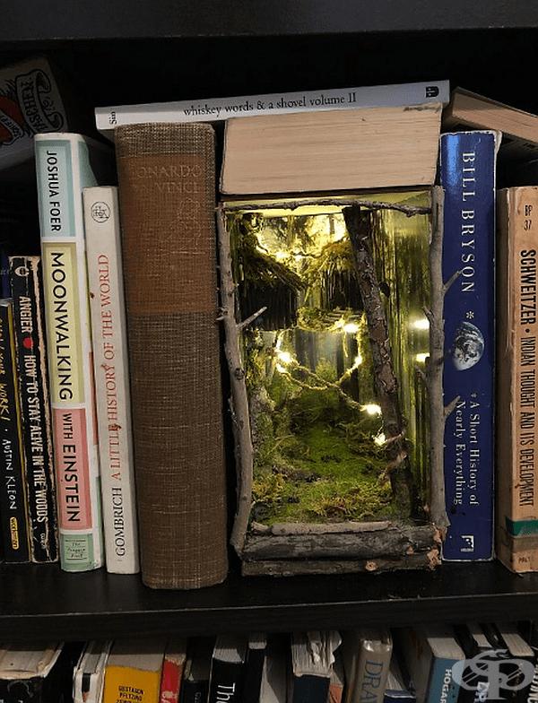 Книжно кътче, вдъхновено от гората.