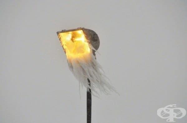 Брадата улична лампа.