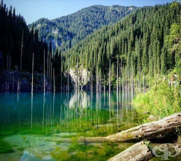 Около езерото природата също е магнетична.