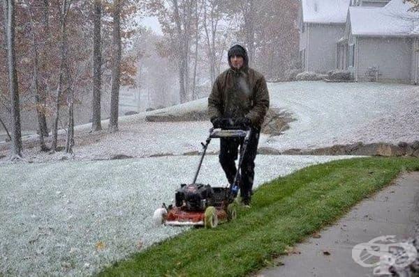 """""""Моя съсед не се интересува от снега. Той трябва да окоси тревата."""""""