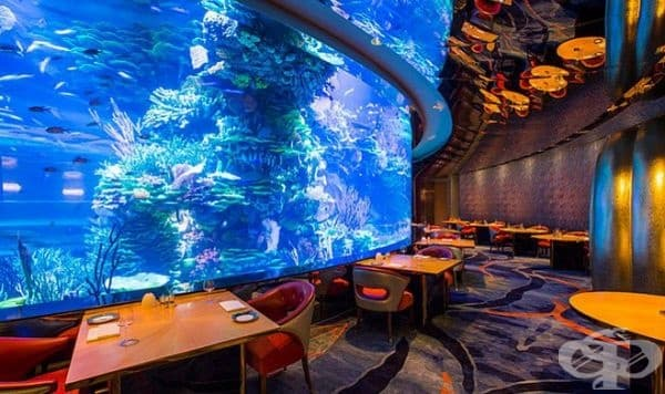 """Ресторант """"Al Mahara"""", Дубай. В този ресторант има огромен аквариум от земята до тавана. Създава илюзията, че човек се намира под водата. Освен това се предлагат много вкусни морски деликатеси."""