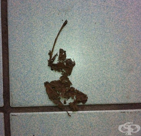Самурайско листо.