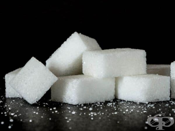 Захарта, подобно на солта, може да се съхранява за неопределено време, особено в запечатани контейнери. В противен случай тя ще абсорбира влагата от въздуха и ще се превърне в една голяма бучка. Но дори и в този случай захарта няма да загуби свойствата си