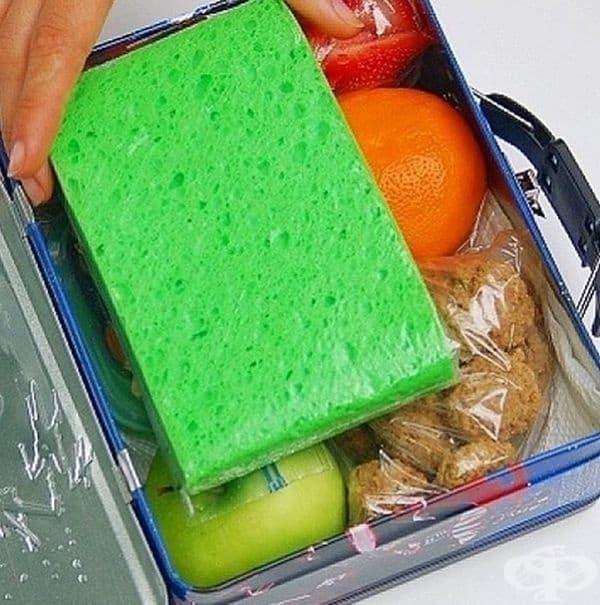 Замразена гъба е добър вариант да се съхрани обяда на децата.