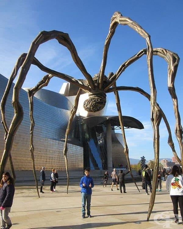 """""""Паяк"""" е 9-метровата скулптура, направена от бронз, неръждаема стомана и мрамор. Нейният автор е Луиза Буржоа, а скулптурата е кръстена """"Маман"""".."""