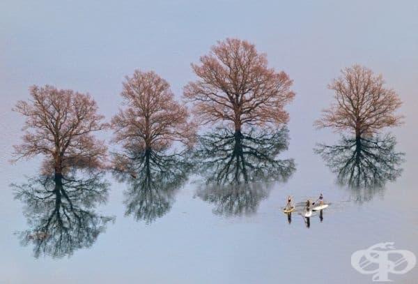 Едно от най-тежките наводнения в историята на Любляна, Словения.