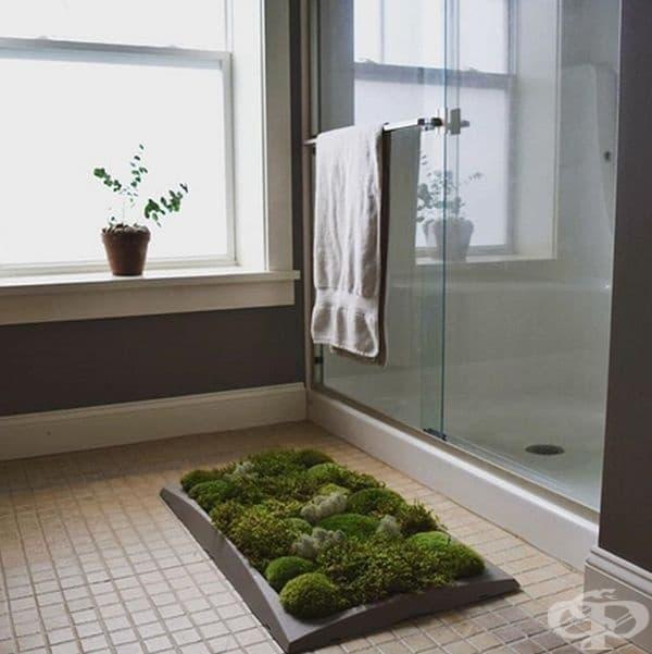 Килимче за баня от мъхеста растителност.