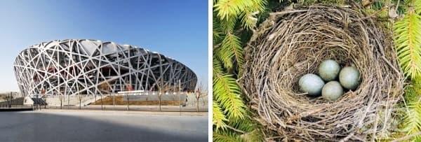 Националният стадион в Пекин