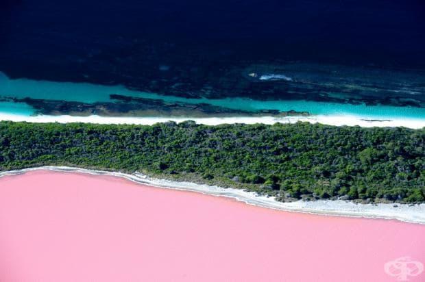 Розовото езеро Хилер