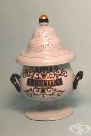 Това бурканче за съхранение на пиявици, ползвано през 19 век е създадено в Стафордшър, Англия.
