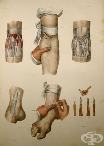 Тази картина също е от атласа на Боржери.