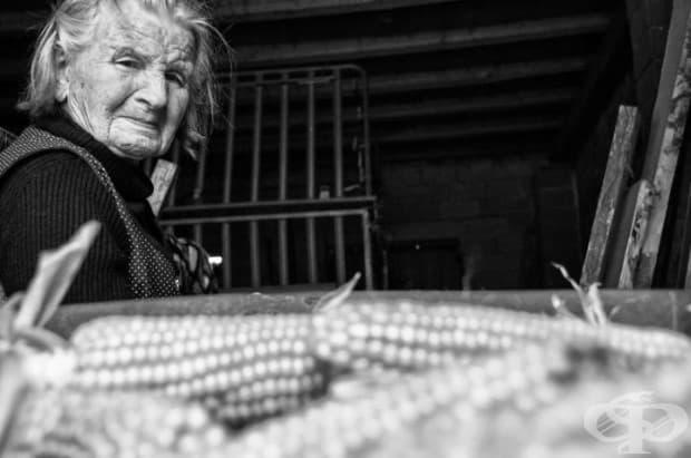 Един ден от живота на 83-годишна баба във фермата в снимки