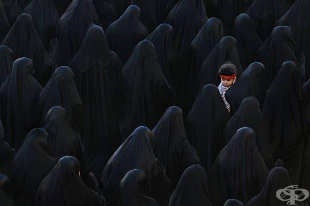 Черно, Бахрейн (3-то място в категория: отворени цветове)