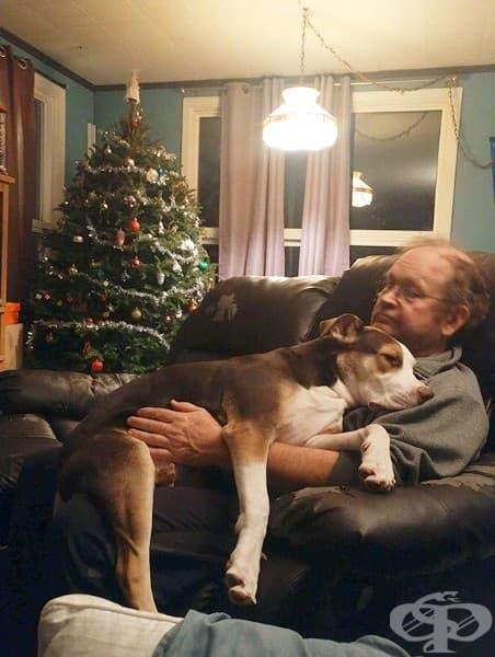 """Баща ми, който """"не иска да прави нищо с кучето"""""""