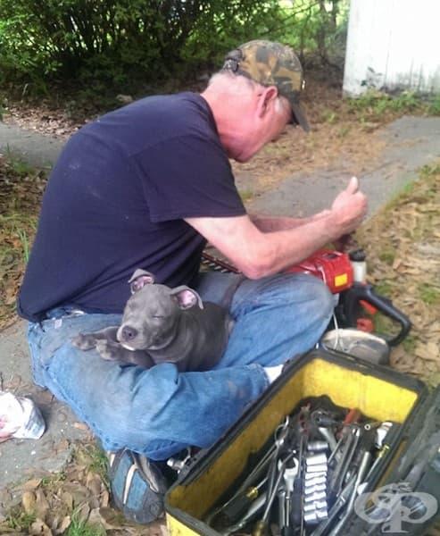 Баща ми постоянно повтаря колко мрази кучетата… но сякаш винаги успявам да го хвана в подобна ситуация.