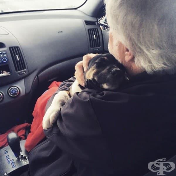 Татко не беше много развълнуван, че ще си взимаме куче. Жалко, че кученцето се влюби в него.