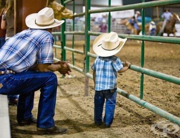 Какъвто бащата, такъв и синът