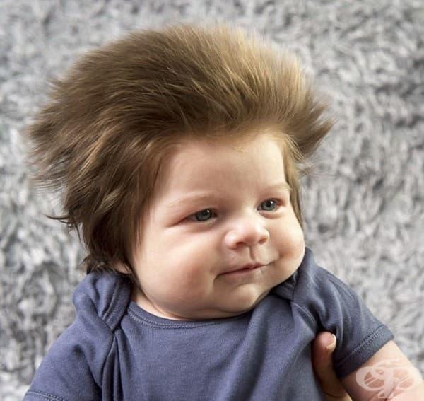 Запознайте се с Джуниър – бебето с невероятно много коса