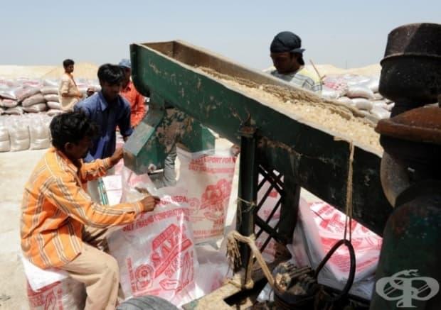 Ето как се пакетира солта в Индия