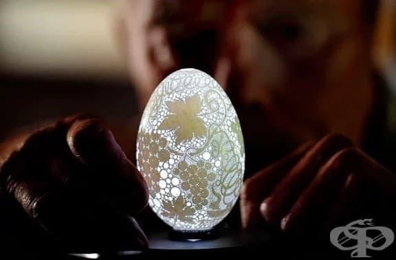 Тази черупка на яйце с над 20,000 дупки