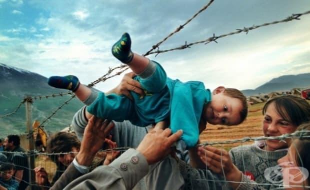 Косово. Родители предават момченце през оградата от бодлива тел на бежански лагер на баба му и дядо му.