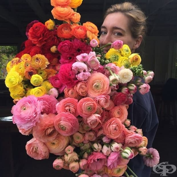 Тези снимки показват, че цветарството е най-хубавата професия на света