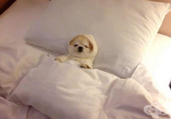 Мога да си легна, когато си поискам... дори в 21:45 часа.