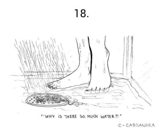 """""""Защо има толкова много вода?!""""?"""""""
