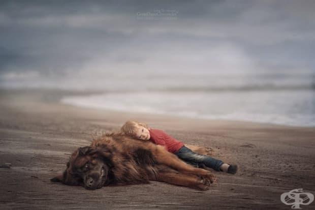 Малки деца и големите им кучета