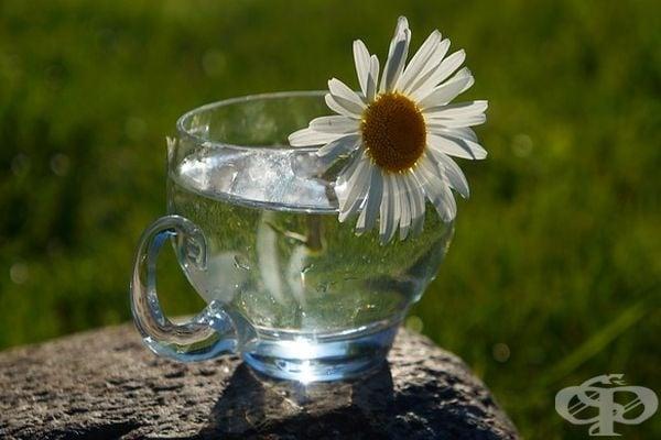 Кои са симптомите на дехидратация на тялото и как да разберем дали пием достатъчно вода - изображение