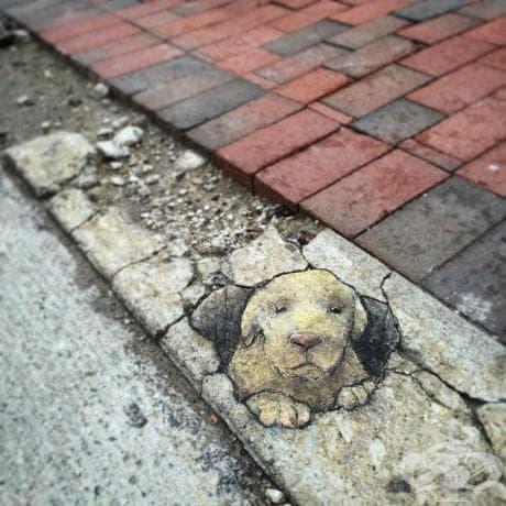 Вижте чудатите тебеширени рисунки по улиците на Ан Арбър от Дейвид Зин