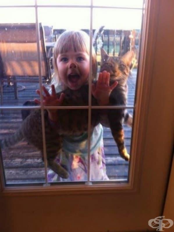 Мамо, искаме да поиграем още 5 минути! /предполагаме, че котката всъщност не иска…/