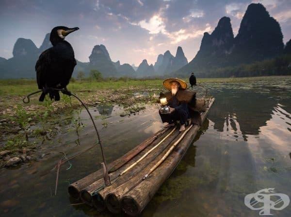 Дзен, Китай.