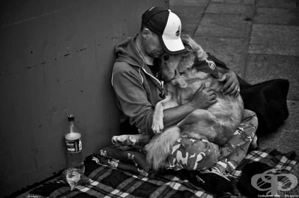 Истинско приятелство.