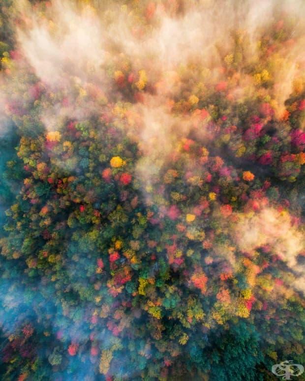 13 невероятни есенни пейзажа