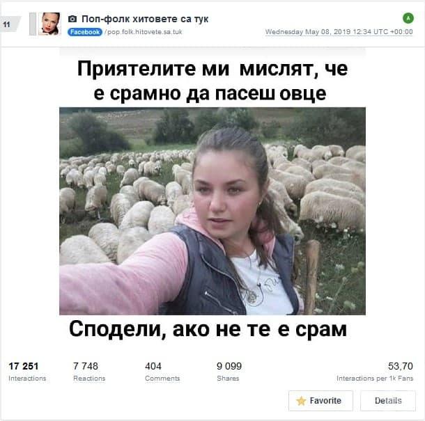 Интересно как с това розовото се пасат овцете