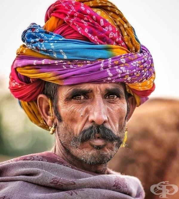 Портрет на търговец на камила в Раджастани.