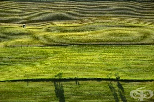 Зърнени полета в Върмонт