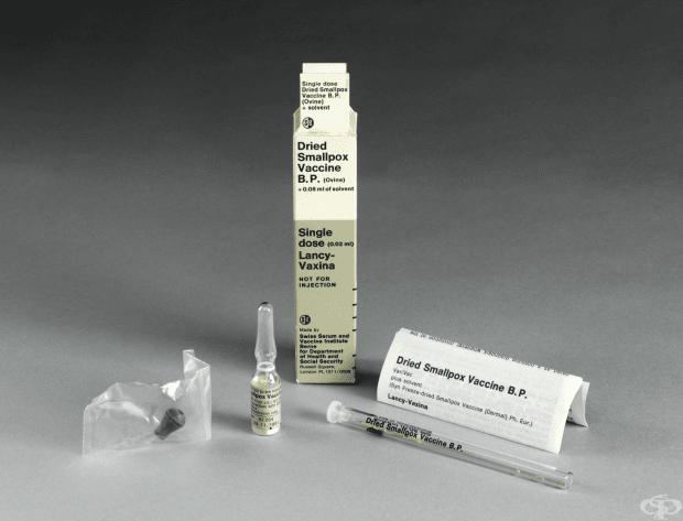 Ваксина срещу едра шарка от 1980  година