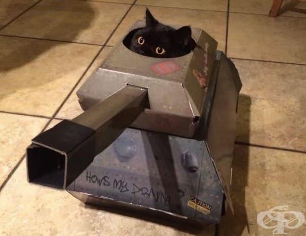 Компания прави картонени танкове, самолети и къщи за котки