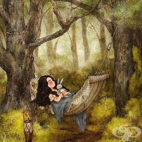 Наслада в гората