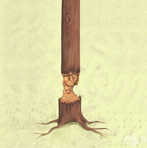 Обезлесяването: човешката цена