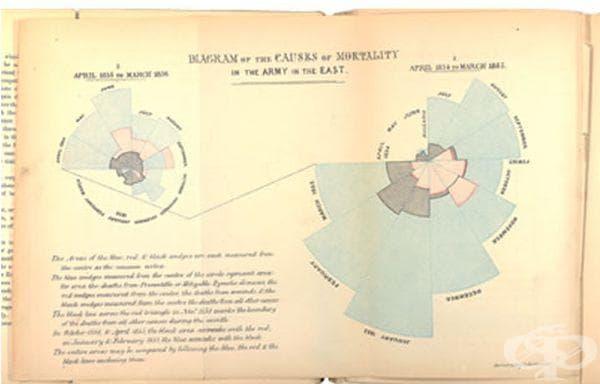 Подробна диаграма, направена от Найтингейл, за причините за смъртността в армията на изток.